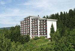 Haus Bayerwald im Sommer