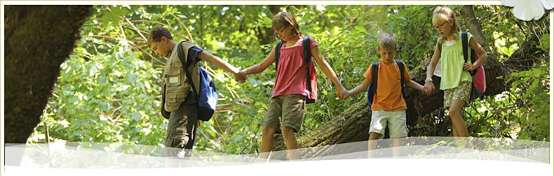 Pauschalangebote für die ganze Familie - Haus Bayerwald Bayerischer Wald