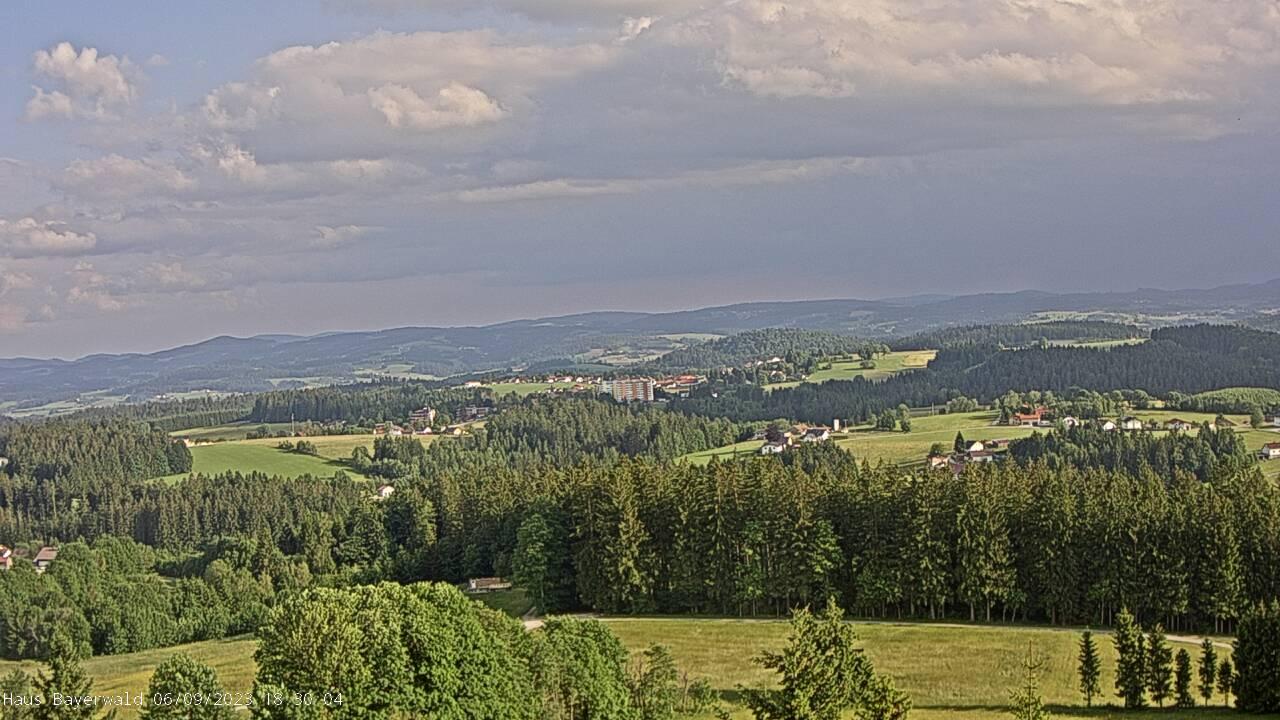 Webcam Altreichenau Bayerwald